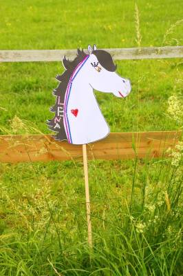 Bastelset Pferdchen Steckenpferd Zum Selbstbasteln