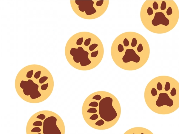 xxl konfetti  raubtierspuren löwe bär leopard